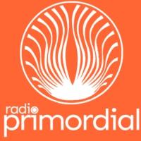 Logo de la radio Radio Primordial FM