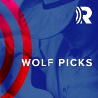 Logo of radio station WYCD-HD2 99.5 Wolf Picks