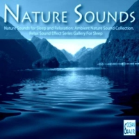 Logo de la radio Digital Impulse - Nature Sound