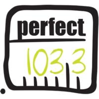 Logo de la radio Perfect Radio