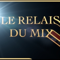 Logo of radio station LA WEBRADIO DU RELAIS DU MIX
