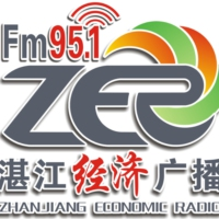 Logo of radio station 湛江经济广播 FM95.1