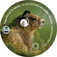 Logo de la radio Fréquence Luz