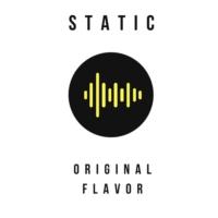 Logo de la radio Static: Original Flavor