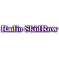 Logo de la radio Radio Skid Row 88.9 FM