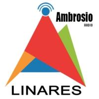 Logo de la radio Radio Ambrosio