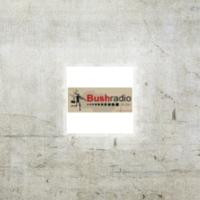 Logo of radio station Bush Radio 89.5