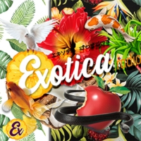 Logo of radio station Exotica Radio