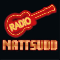 Logo of radio station Radio Nattsudd