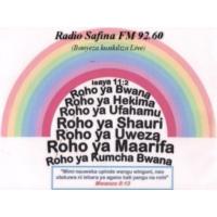 Logo de la radio Radio Safina