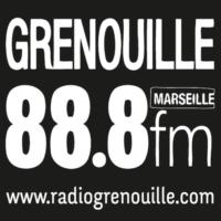 Logo of radio station Radio Grenouille 88.8 FM