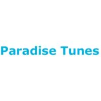 Logo de la radio Paradise Tunes