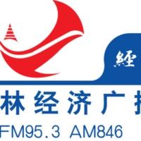 Logo of radio station 吉林经济广播 FM95.3 - Jilin Economic Broadcasting