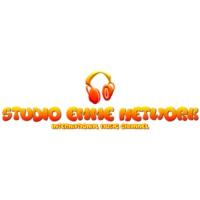 Logo of radio station Studio Emme Network