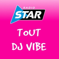 Logo of radio station TOUT DJ VIBE