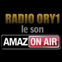 Logo of radio station Radio ORY1