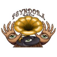 Logo of radio station Psyndora Chillout