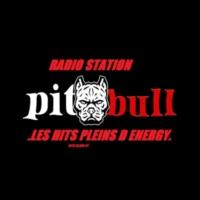 Logo of radio station ' PITBULL RADIO DJS'