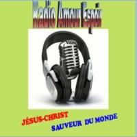 Logo of radio station Radio Amour Espoir