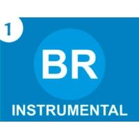 Logo of radio station Boyacaradio Tunja - Instrumental