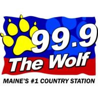 Logo of radio station WTHT 99.9 The Wolf