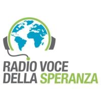 Logo of radio station RVS Italy