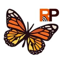 Logo of radio station RADIO PLAYA