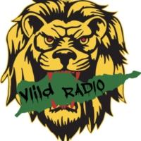 Logo of radio station www.viildradio.com