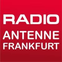 Logo of radio station Antenne Frankfurt 95.1