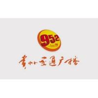 Logo de la radio 贵州交通广播 FM95.2