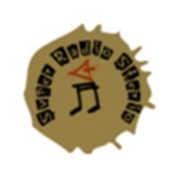 Logo de la radio Super Radio Sterio