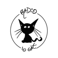 Logo of radio station Radio Lo Gat