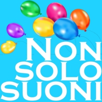 Logo of radio station Radio Nonsolosuoni