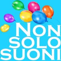 Logo de la radio Radio Nonsolosuoni