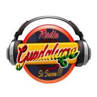 Logo de la radio Radio Guadalupe Llallagua