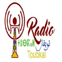 Logo de la radio RadioToubkal
