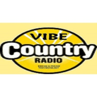 Logo of radio station Vibe Country