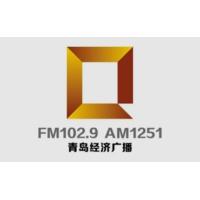 Logo de la radio 青岛经济广播 FM102.9
