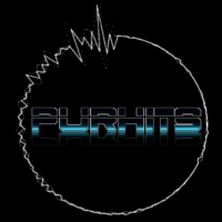 Logo de la radio Purhits.net