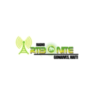 Logo of radio station Radio Artibonite Fm