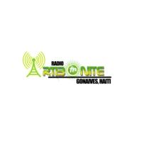 Logo de la radio Radio Artibonite Fm