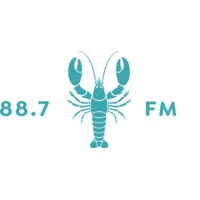 Logo of radio station WMVY 88.7 FM