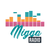 Logo of radio station Radio Nigga Ecuador