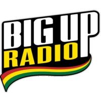 Logo de la radio BigUp Radio - Massive Dub