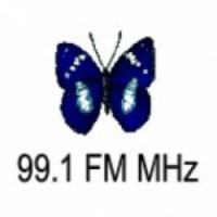 Logo of radio station Radio Marcela 99.1FM MHz