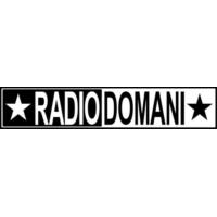 Logo of radio station Radio Domani