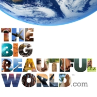 Logo of radio station The Big Beautiful World