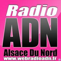 Logo of radio station radioadn