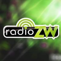Logo de la radio Radio Ziemi Wieluńskiej