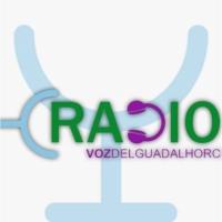 Logo of radio station Radio Pizarra